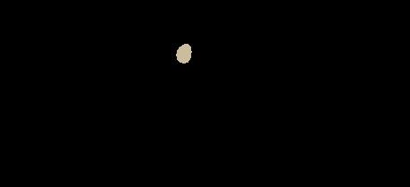Logo von Automatisch einkaufen